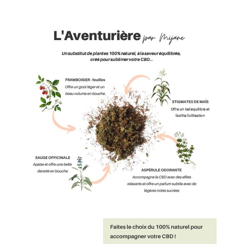 L'Aventurière - Substitut...