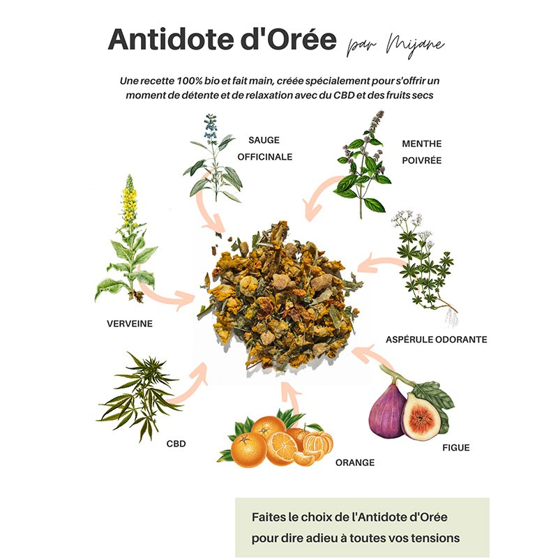 L'Antidote d'Orée - Infusion